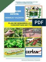 Plan de Desarrollo Local Hermilio Valdizan 2017