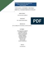 ECO LADRILLOS PROYECTO.docx