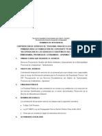TdR Responsables de Recojo de Información