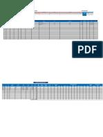 Planilla de Remuneraciones y Boletas de Pago_formato (1)