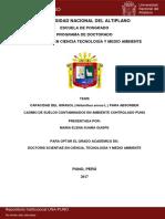 Maria_Elena_Suaña_Quispe.pdf
