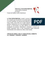 ANATOMÍA QUIRÚRGICA DE LA FOSA INFRATEMPORAL.