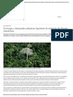 Noruega e Alemanha admitem hipótese de extinção do Fundo Amazônia _ Notícias e análises sobre os fatos mais relevantes do Brasil _ DW _ 04.07.2019