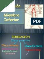irrigaciondelmiembroinferior-130526162400-phpapp01
