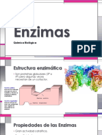 Enzimas 3.pptx