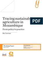 Tracing sustainable agriculture in Mozambique