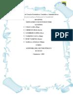 Casos Prácticos de Auditoria del Sector Público