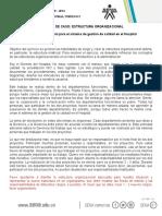 2 Anexo Estudios de Caso Estructura Organizacional