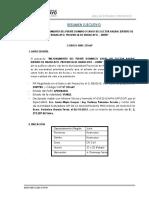 Resumen Ejecutivo Puente Domingo Savio