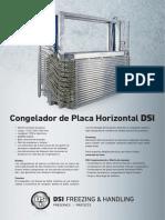 DSI Horizontal
