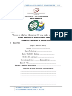 Formato de La Etapa 04 Informe Final