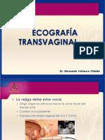 Ultrasonido Transvaginal