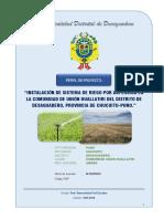 PIP - Riego Tecnificado Unión Huallatiri 2016.pdf