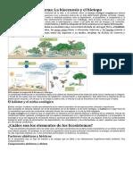 Concepto de Ecosistema.docx