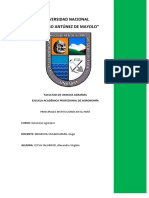 Instituciones Que Existen en La Región Ancashfinal
