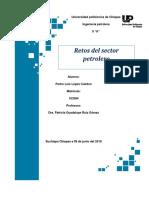 metas del sector petrolero .docx