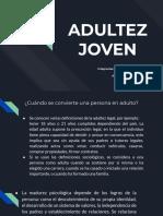 Adultez Joven, ciclos del desarrollo  humano