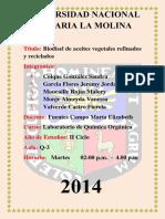 Informe_11_de_Quimica_Organica.docx