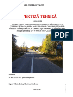 Expertiza Poduri DJ643B.pdf