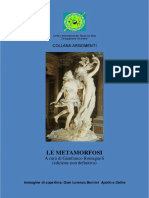 metamorf.pdf