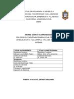 Informe Practicas Profesionales Veitia