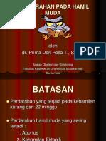 docslide.net_perdarahan-hamil-mudappt.ppt
