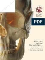 Anatomy of the Human Skull.pdf