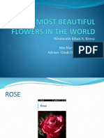 10 MOST BEAUTIFUL FLOWERS IN THE WORLD.pptx