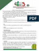 reglamento_bola_puesta_ultimo.pdf