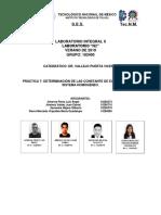 PROTOCOLO P7 COMPLETO.docx