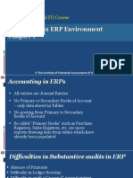 ERP Audit Chapter 1