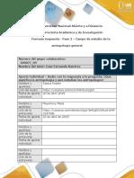 Formato Respuesta - Fase 2 -100007_69
