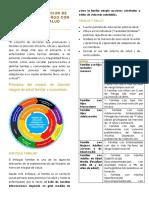 Proceso de Atención de La Poblacion a Cargo Con Enfoque de Salud Familair