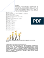 LAS ETAPAS DEL SER HUMANO.docx