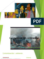 Análisis de La Industria Del Aserrío en La Provincia de Maynas - Loreto - Perú - 2011.