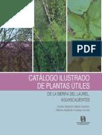 catalogo_ilustrado_plantas_utiles_sierra_laurel.pdf