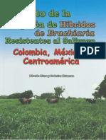 Impacto_adopcion_hibridos_Brachiaria_resistentes_salivazo_Colombia_Mexico_centroamerica.pdf
