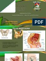 Radioterapia en Pelvis Masculina