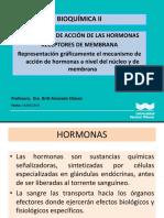 Bioquímica II Quinta Clase
