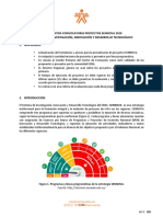 Lineamientos Convocatoria Proyectos 2020 (1)