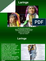 9.Laringe 4