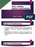 Small Animal Positioning