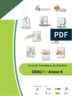 Anexo 6 - Aparelhos GAF-Grau I