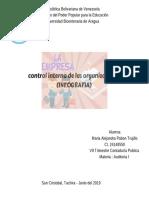Infografia de Control Interno Auditoria i