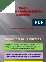 t2 Funciones de La Cultura