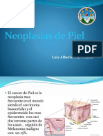 neoplasiasdepiel-140717235914-phpapp01.pdf