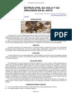 25-Mosca_Oestrus_Ovis.pdf