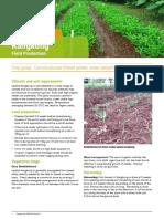 Philippines-Factsheet_Kangkong_Field_English.pdf