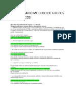 CUESTIONARIO MODULO DE GRUPOS ECONÓMICOS..docx