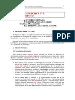 Pract3Trabajo.PDF
